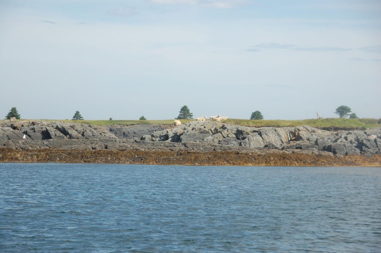 Nova Scotia47